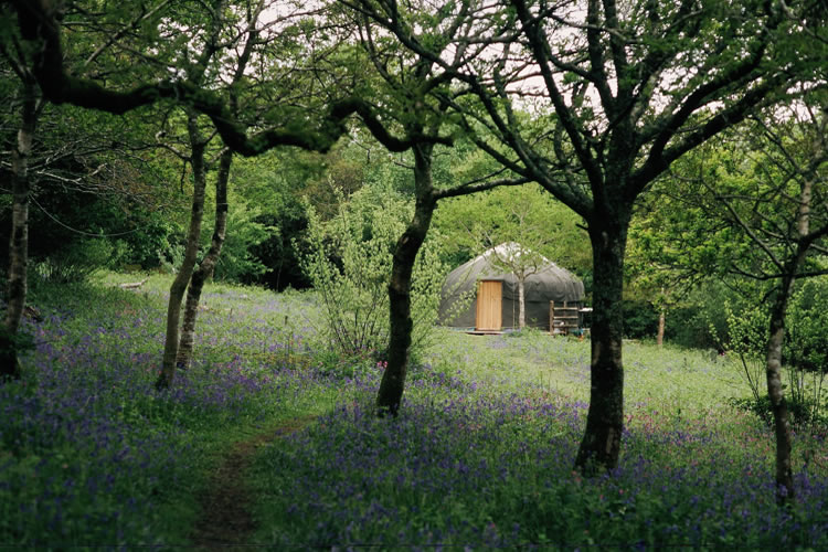 16ft Green Man Yurt - Sleeps 2 (plus a little one)